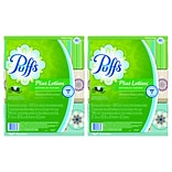 Puffs® Plus Lotion Facial Tissues, 2-Ply, 124 Sheets/Box, 6 Boxes/Pack; 2 Packs, 12 Total Boxes