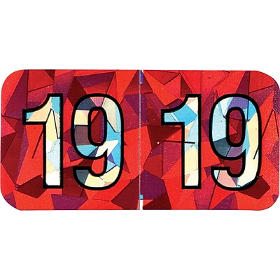 Medical Arts Press® Holographic End-Tab Year Labels, 2019, Red