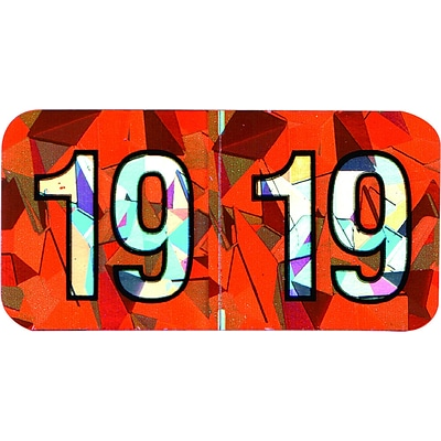 Medical Arts Press® Holographic End-Tab Year Labels, 2019, Orange