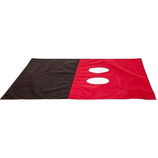 Mickey Pocket Blanket with $149 order