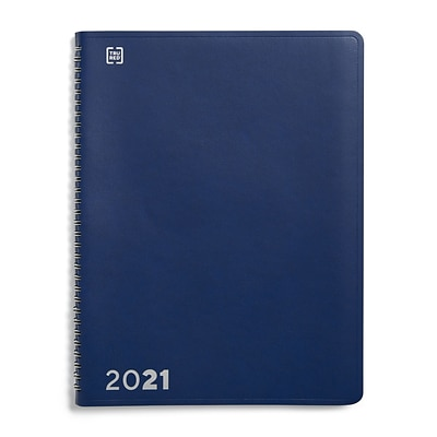 2021 TRU RED 8 x 11 Appointment Book, Blue (TR58470-21)