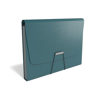 TRU RED™ Reinforced Plastic Accordion File, 13-Pocket, Letter Size, Teal (TR52017)