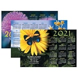 Assorted Calendar Magnets; 4x6, Floral