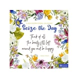 2021 TF Publishing 12 x 12 Wall Calendar, Seize the Day, Multicolor (21-1041)