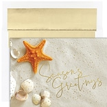 JAM PAPER Christmas Cards & Matching Envelopes Set, 7 6/7 x 5 5/8, Starfish Greetings, 18/Pack (52