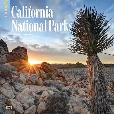 California National Parks 2018 12 x 12 Inch Monthly Square Wall Calendar