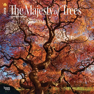 The Majesty of Trees 2018 12 x 12 Inch Square Wall Calendar