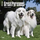 Great Pyrenees 2018 12 x 12 Inch Square Wall Calendar