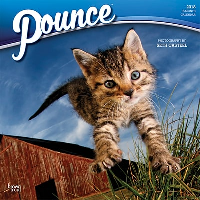 Pounce 2018 12 x 12 Inch Monthly Square Wall Calendar