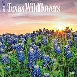 Texas Wildflowers 2018 12 x 12 Inch Monthly Square Wall Calendar