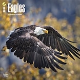 Eagles 2018 12 x 12 Inch Square Wall Calendar