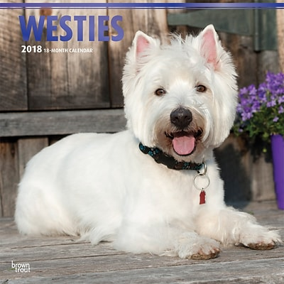 West Highland White Terriers 2018 12 x 12 Inch Square Wall Calendar with Foil Stamped Cover