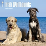 Irish Wolfhounds 2018 12 x 12 Inch Square Wall Calendar