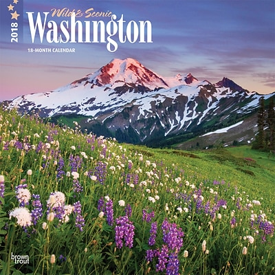 Washington, Wild & Scenic 2018 12 x 12 Inch Monthly Square Wall Calendar