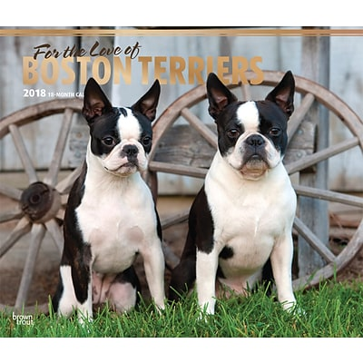 For the Love of Boston Terriers 2018 Deluxe Wall Calendar with Foil Stamped Cover