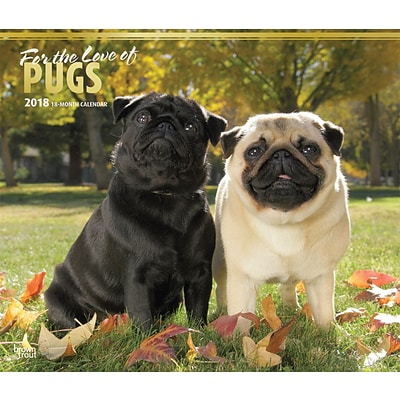 For the Love of Pugs 2018 Deluxe Wall Calendar with Foil Stamped Cover