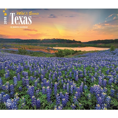 Texas, Wild & Scenic 2018 12 x 14 Inch Monthly Deluxe Wall Calendar