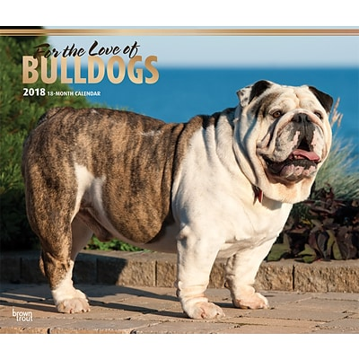 For the Love of Bulldogs 2018 Deluxe Wall Calendar with Foil Stamped Cover