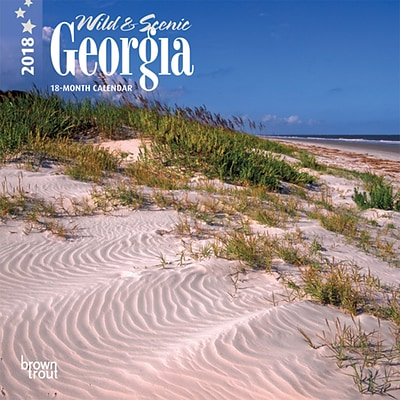 Georgia, Wild & Scenic 2018 7 x 7 Inch Monthly Mini Wall Calendar