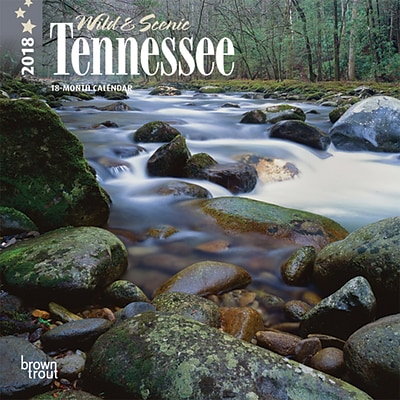 Tennessee, Wild & Scenic 2018 7 x 7 Inch Monthly Mini Wall Calendar