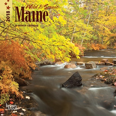 Maine, Wild & Scenic 2018 7 x 7 Inch Monthly Mini Wall Calendar