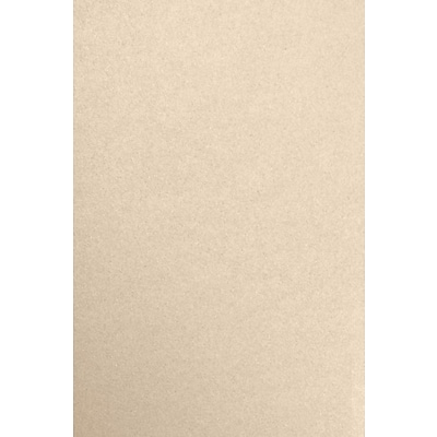 LUX 12 x 18 Paper 50/Pack, Taupe Metallic (1218-P-M09-50)