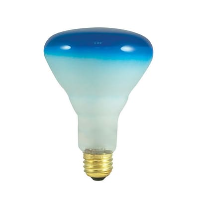 Bulbrite Incandescent (INC) BR30 75W Dimmable Blue Wide Flood Light Bulb, 8 Pack (243075)