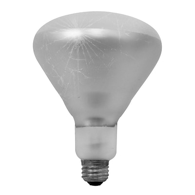 Bulbrite Incandescent (INC) BR40 250W Dimmable Clear Tough Coat 2700K Warm White Light Bulb, 6 Pack (714725)