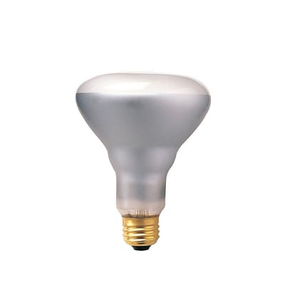 Bulbrite Incandescent (INC) BR30 65W Dimmable 2700K Warm White Flood Light Bulb, 12 Pack (294806)