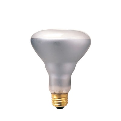 Bulbrite Incandescent (INC) BR30 65W Dimmable 2700K Warm White Flood Light Bulb, 12 Pack (294816)