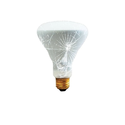 Bulbrite Incandescent (INC) BR30 65W Dimmable Frost Tough Coat 2700K Warm White Light Bulb, 6 Pack (280465)