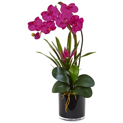 Nearly Natural Orchid and Bromeliad in Glossy Black Cylinder (1437-BU)