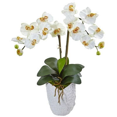 Nearly Natural Double Phalaenopsis Orchid in White Vase (1480-CR)