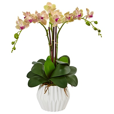 Nearly Natural Phalaenopsis Orchid Arrangement in White Vase (1489)