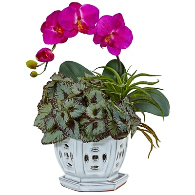 Nearly Natural Mini Phalaenopsis Orchid and Succulent in Planter (1507-OR)