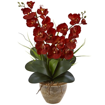 Nearly Natural Seasonal Double Phalaenopsis Orchid Arrangement (1514-AT)