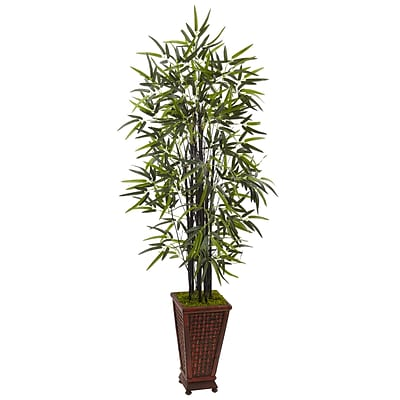 Nearly Natural 5.5' Black Bamboo Tree in Decorative Planter (5806)