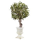 Nearly Natural 3' Olive Tree in White Urn (5833)
