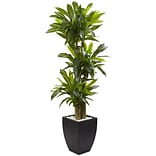 Nearly Natural 5.5' Corn Stalk Dracaena with Black Wash Planter (6869)