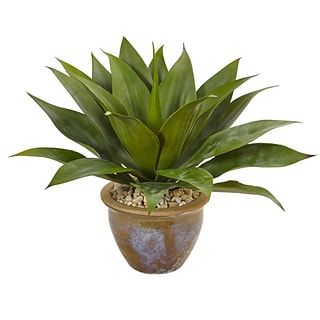 Nearly Natural Agave in Glazed Clay Pot (6942)