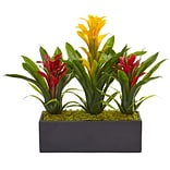 Nearly Natural Bromeliads in Rectangular Planter (6954-YR)