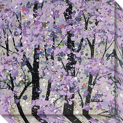 Amanti Art Canvas Art Gallery Wrap Spring Song I by Helena Alves, 20W x 20H, (DSW3637066)
