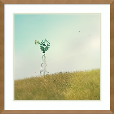 Amanti Art Framed Art Print Farm Morning IV Square Windmill by Sue Schlabach 21 x 21H, Frame Maple (DSW3894393)
