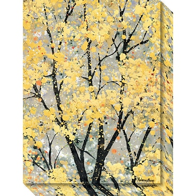 Amanti Art Canvas Art Gallery Wrap Early Spring I by Helena Alves 16 x 21H (DSW3904515)