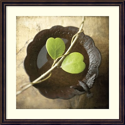 Amanti Art Framed Art Print Entwined by Glen & Gayle Wans, 24W x 24H Frame Dark Bronze (DSW3908982)