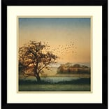 Amanti Art Framed Art Print Good By Day Birds by William Vanscoy 17W x 17H Frame Satin Black (DSW3