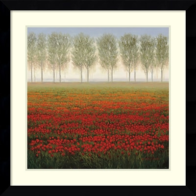 Amanti Art Framed Art Print Morning Mist by C Park 33 x 33H, Frame Satin Black  (DSW3908996)