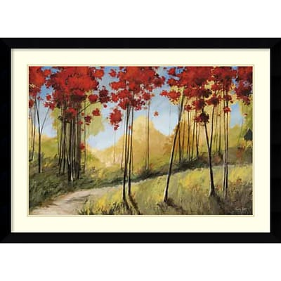 Amanti Art Framed Art Print Forest Trail by Thomas Andrew  45 x 33H, Frame Satin Black (DSW3909039)