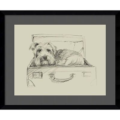 Amanti Art Framed Art Print Stowaway I (Dog) by Ethan Harper 23W x 19H, Satin Black (DSW3909199)