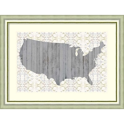 Amanti Art Framed Art Print Flower Map IV by Jennifer Goldberger 41W x 31H Frame Silver (DSW3909372)